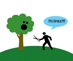 I hate trees